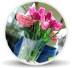 Catalog icon cut flowers