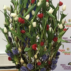 Flower arrangement with tulips